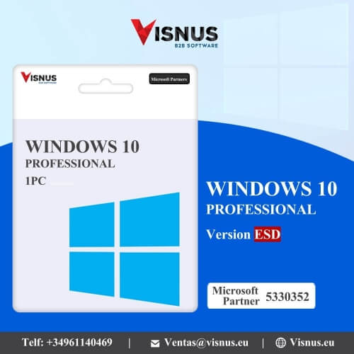 Precio Windows 10 Profesional Perpetua ESD, comprar Windows 10