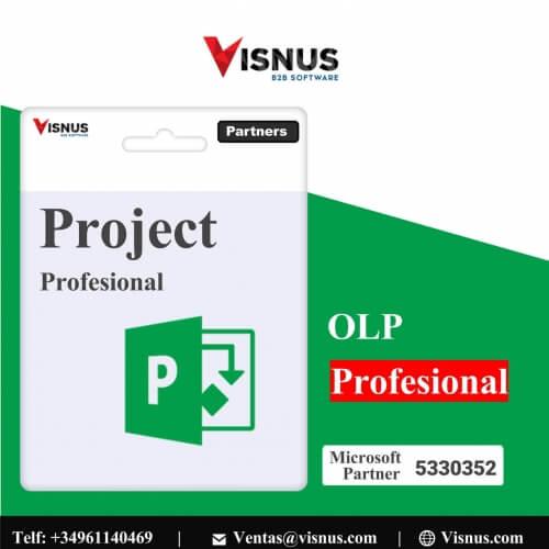 Precio Project 2019 Profssional Perpetua, comprar Project 2019