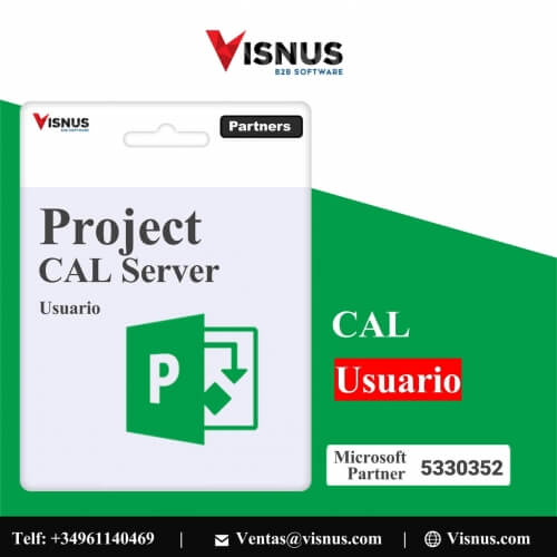 Precio Project 2019 Cal Server User Perpetua, comprar Project