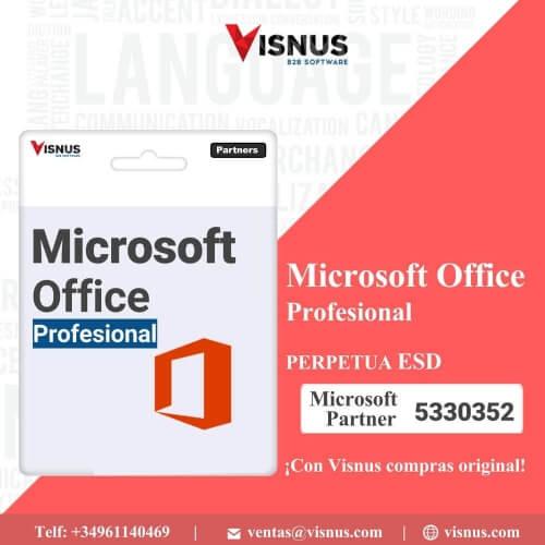 Precio Office Profesional 2019 Perpetua ESD, comprar Office