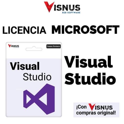 Precio VISUAL STUDIO PROFESSIONAL PERPETUA, comprar VISUAL