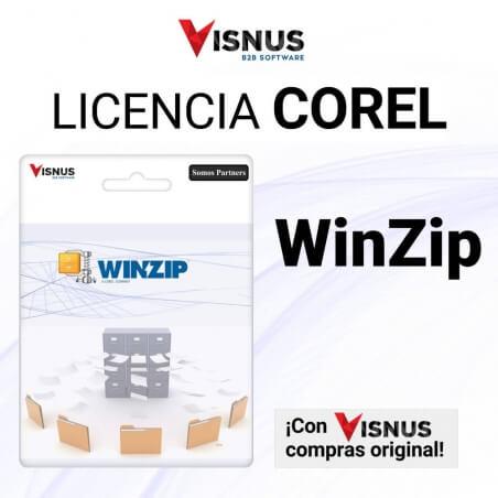 Precio WinZip Pro Permanente, comprar WinZip Pro Permanente